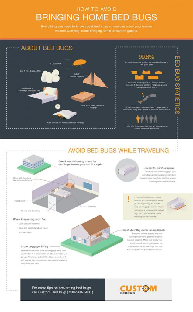 Custom-Bed-Bug-Infographic-3.jpg