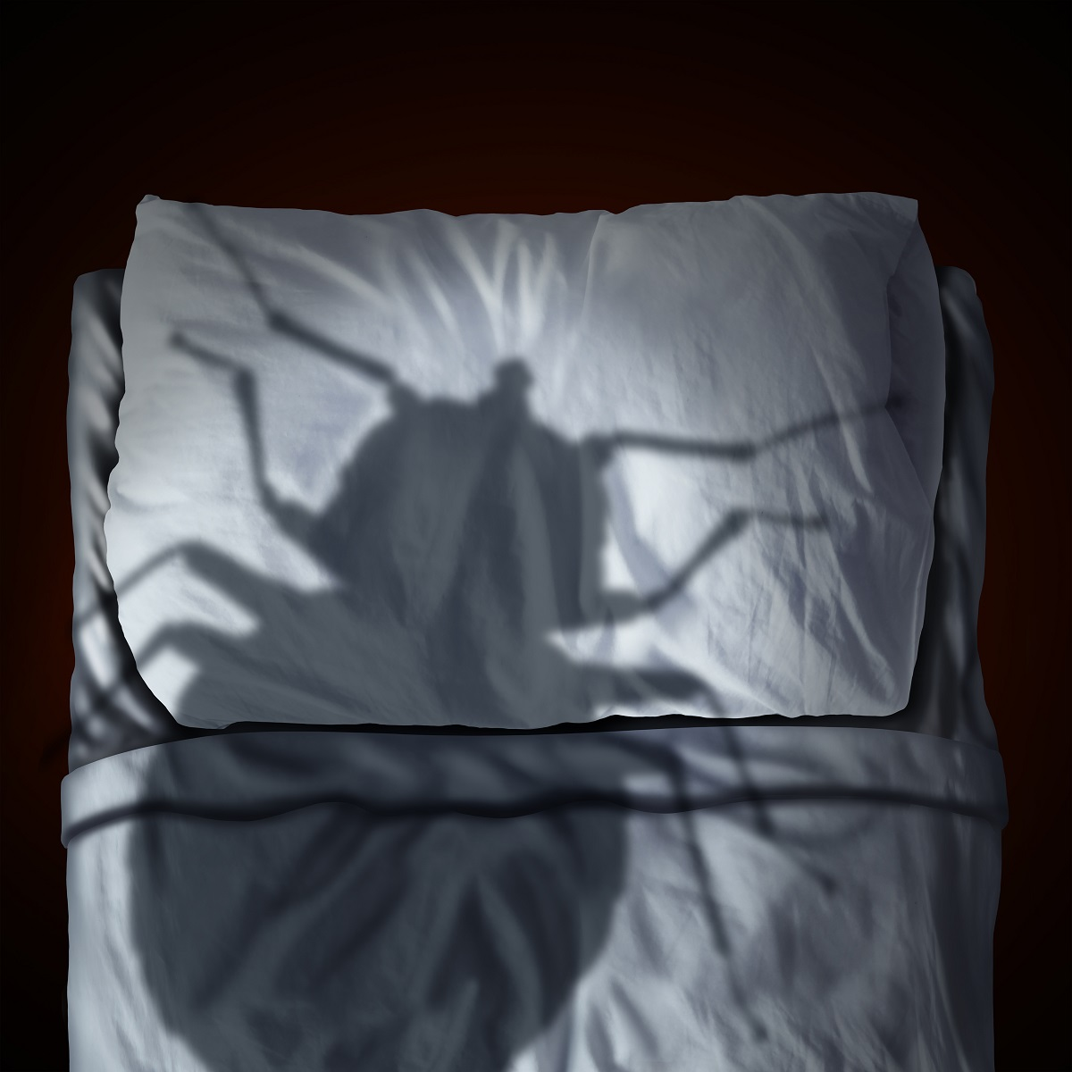 Bed bug shadow on a pillow